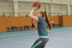 basket_show_19